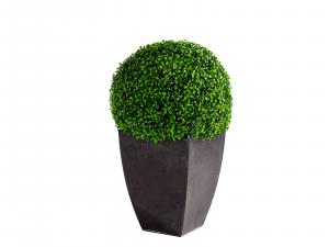 CEAC-007 | Topiary Ball